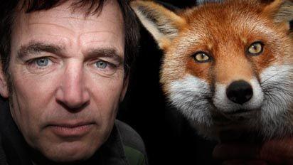 Fox Hunt_A2