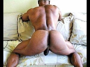 Phyne ass